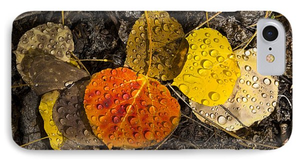 Aspen Leaves On Bishop Creek IPhone Case