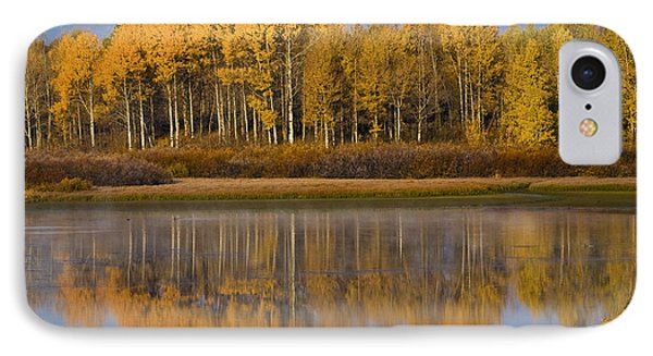 IPhone Case featuring the photograph Aspen Reflection by Sonya Lang