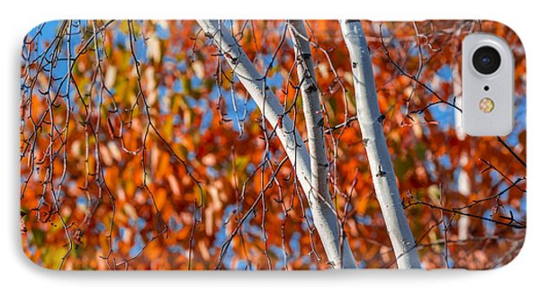 IPhone 7 Case featuring the photograph Aspen by Sebastian Musial