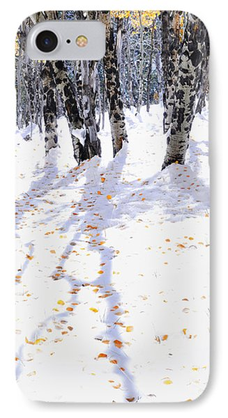 Aspen Shadows IPhone Case by The Forests Edge Photography - Diane Sandoval