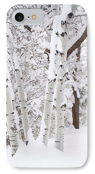 Aspen Snow IPhone Case