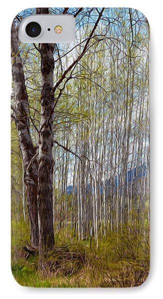 Aspen Trees Proudly Standing Phone Case by Omaste Witkowski