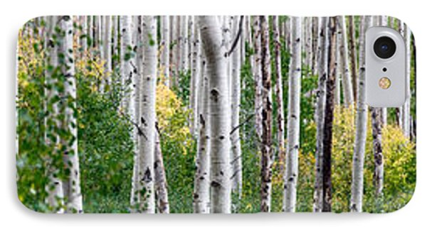 Aspen Trees IPhone Case by Steve Gadomski