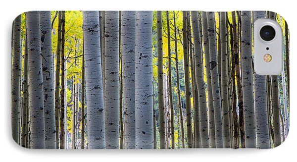 Aspen Trunks Phone Case by Inge Johnsson
