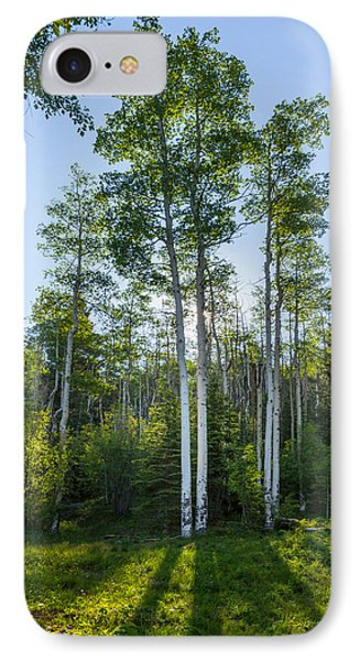 Aspens At Sunrise 1 - Santa Fe New Mexico IPhone Case by Brian Harig