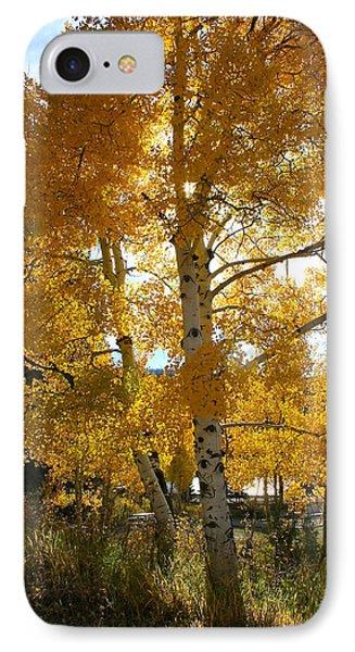 Aspen's Gold IPhone Case