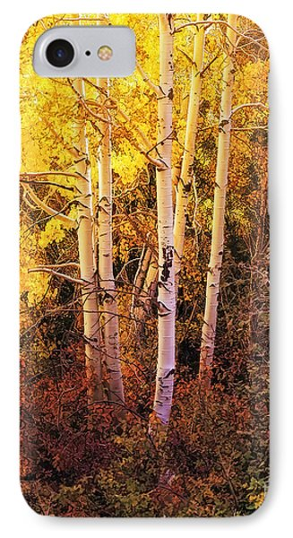 Aspens In Autumn IPhone Case by Nancy Marie Ricketts