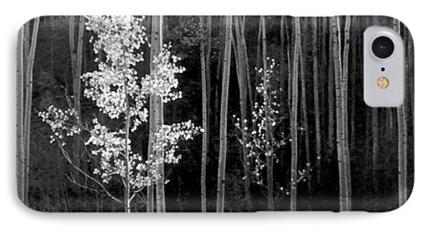 Aspens Northern New Mexico IPhone Case by Ansel Adams