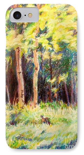 Aspens On The North Rim Phone Case by Katrina West