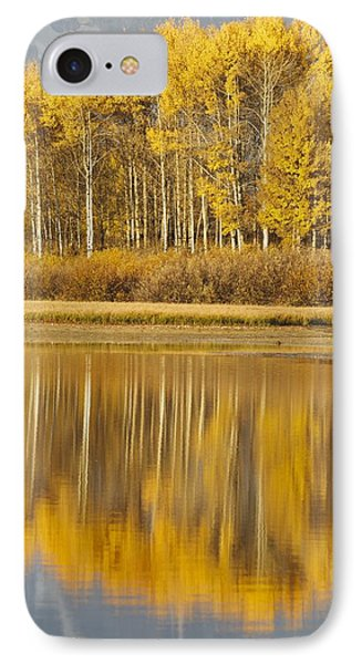 Aspens Reflected In A Pool In The Snake IPhone Case by David Ponton
