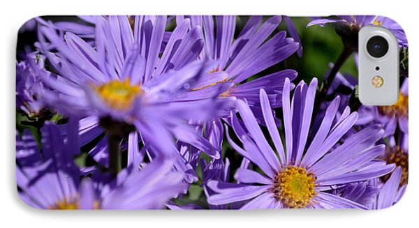 IPhone Case featuring the photograph Asters After The Rain by Scott Lyons