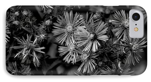 IPhone Case featuring the photograph Asters In Monochrome by Beth Akerman