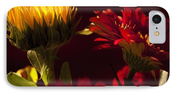 Asters In The Light IPhone Case by Andrew Soundarajan