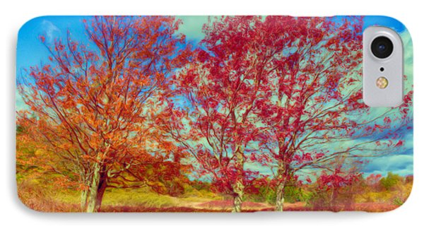 Astonishing Autumn - Fall Colors At Dolly Sods II Phone Case by Dan Carmichael