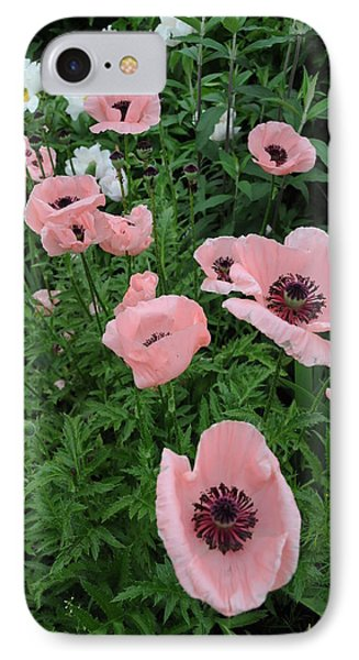 At Bridge Of Flowers  --  Massachusetts  IPhone Case