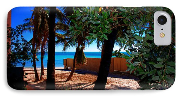 At Dog's Beach In Key West IPhone Case by Susanne Van Hulst