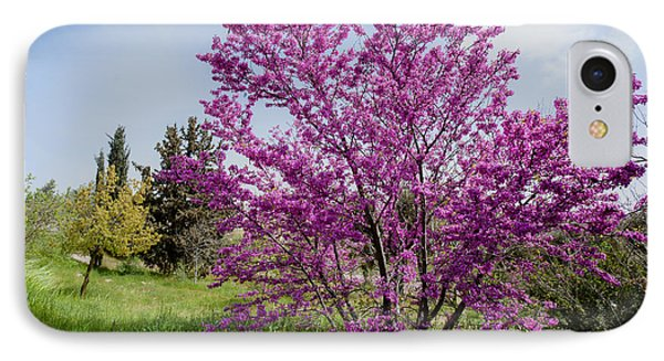 IPhone Case featuring the photograph At Full Blossom by Uri Baruch