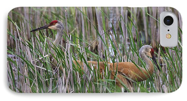 IPhone Case featuring the photograph At Home In The Marsh by Gary Hall