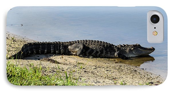 At The Lake Alligator IPhone Case