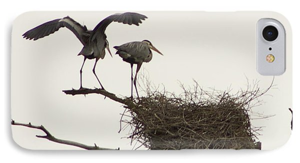 IPhone Case featuring the photograph At The Rookery by Alice Mainville