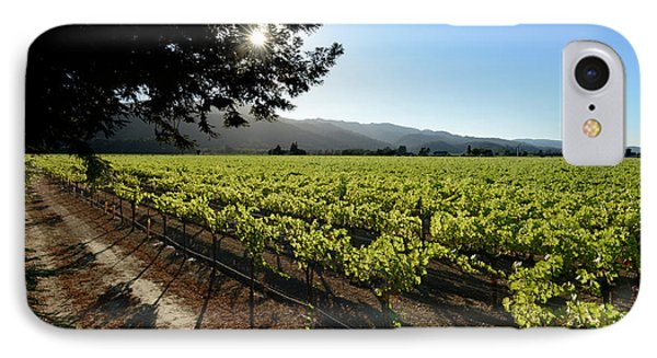 At The Vineyard IPhone Case