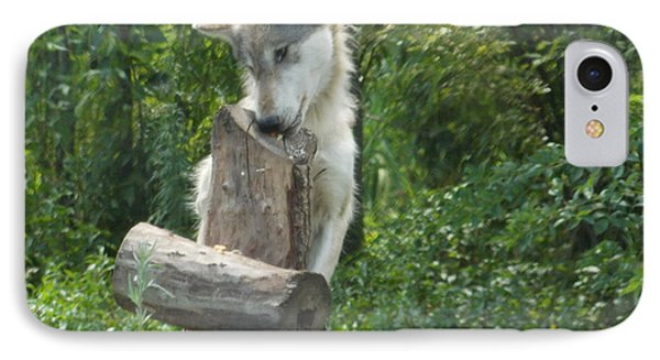 At Wolf Hollow IPhone Case by Catherine Gagne