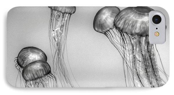 Atlantic Jellyfish - California Monterey Bay Aquarium IPhone Case