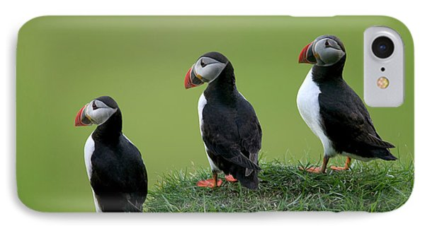 Atlantic Puffin Trio On Cliff Phone Case by Cyril Ruoso