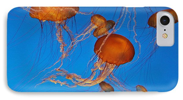 Atlantic Sea Nettle Jellyfish Phone Case by Tap On Photo