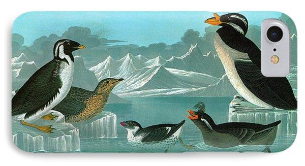 Audubon Auks IPhone 7 Case by Granger