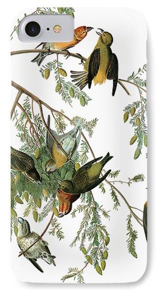 Audubon Crossbill IPhone 7 Case by Granger
