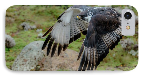 Buzzard iPhone 7 Case - Augur Buzzard (buteo Augur by Roger De La Harpe