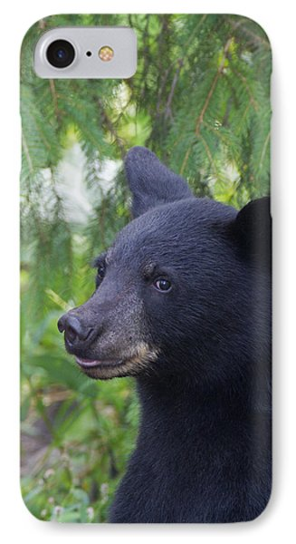 IPhone Case featuring the photograph August Coy by Gerry Sibell