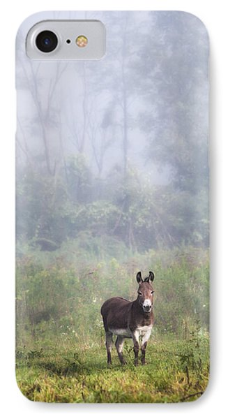 August Morning - Donkey In The Field. Phone Case by Gary Heller