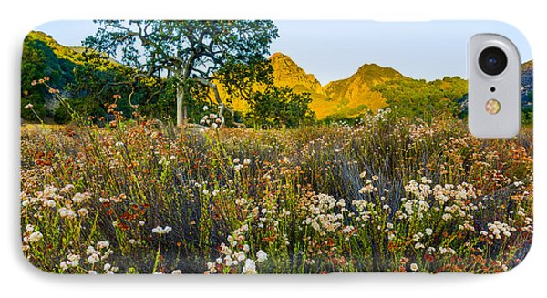August Sunrise In Malibu Creek State Park IPhone Case