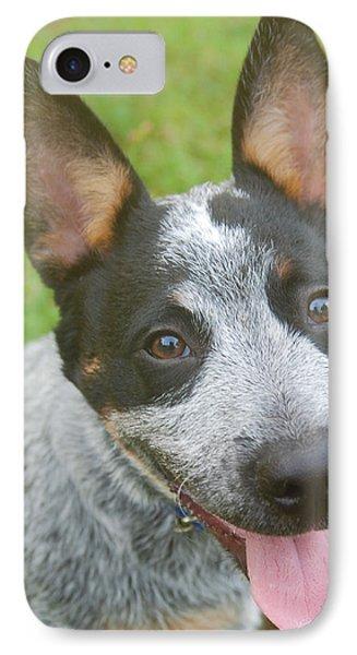 Australian Cattle Dog IPhone Case