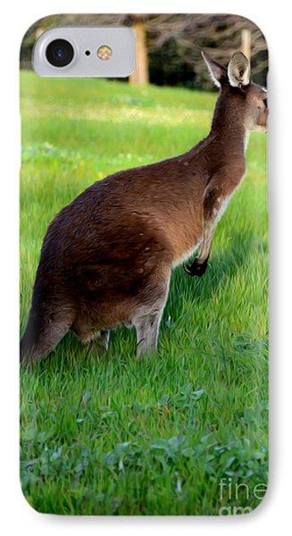 Australian Kangaroo At Sunset IPhone Case by Phill Petrovic