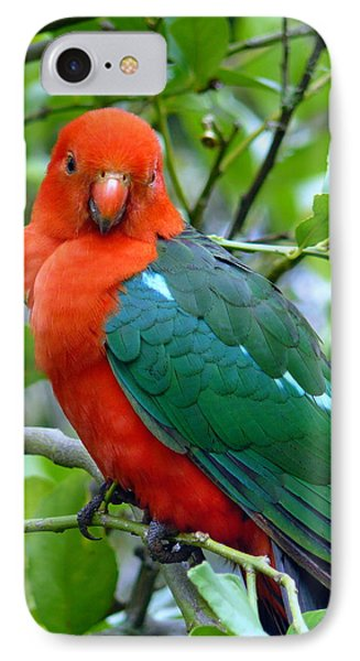 IPhone Case featuring the photograph Australian King Parrot Portrait by Margaret Stockdale
