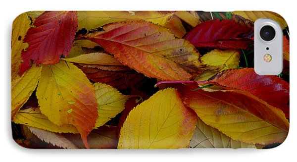 IPhone Case featuring the photograph Autum by Barbara Walsh