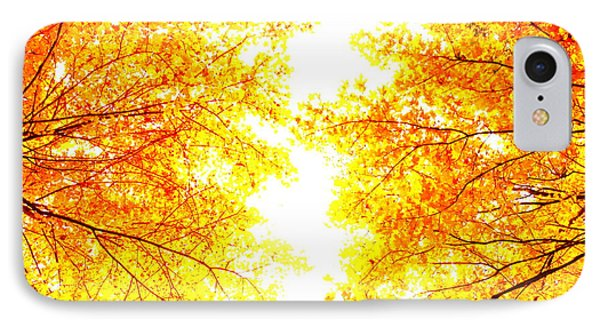 Autumn Abstract IPhone Case by Tim Good