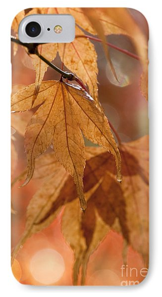Autumn Acer Phone Case by Anne Gilbert