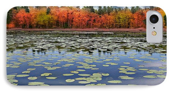 Autumn Across The Pond IPhone Case by Barbara S Nickerson