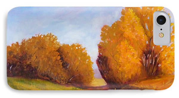Autumn Afternoon Phone Case by Nancy Merkle
