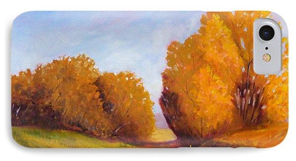 Autumn Afternoon IPhone Case by Nancy Merkle