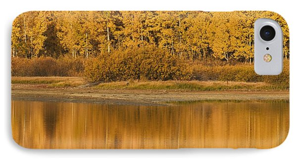 Autumn Aspens Reflected In Snake River Phone Case by David Ponton