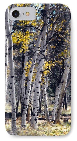 Autumn Aspens IPhone Case by Susan Schroeder