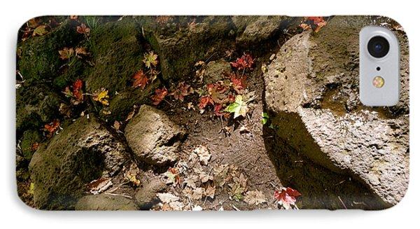 Autumn At Hallasan Phone Case by Yen
