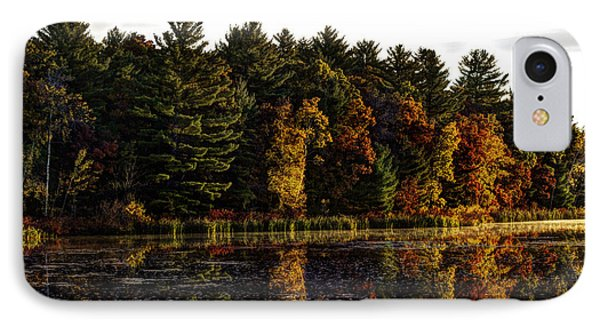 Autumn At It's Finest 2 Phone Case by Thomas Young