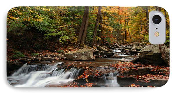 Autumn At Ricketts Glen IPhone Case by Dan Myers