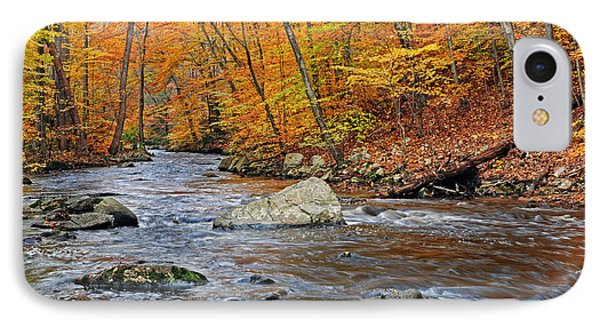 Autumn At The Black River IPhone Case by Dave Mills